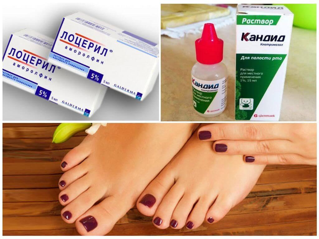 Фармакологические свойства препарат Кандид